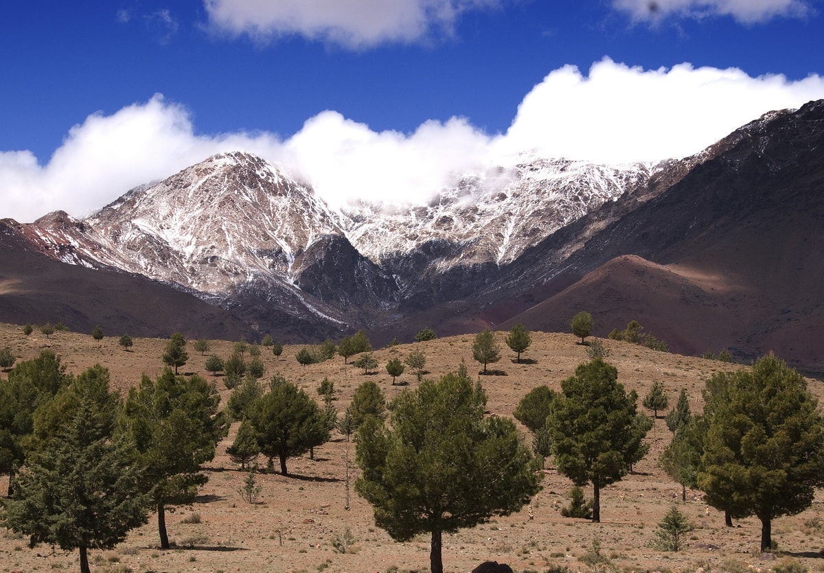 Active Treks Morocco - Aguelzim pass and Toubkal Ascent 01
