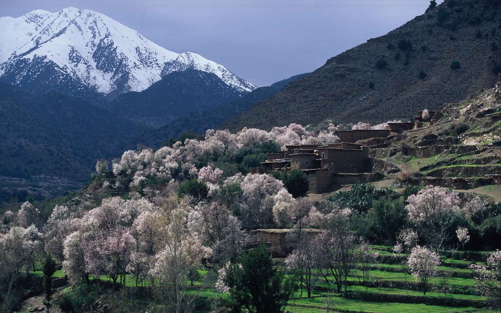 Active Treks Morocco - Atlas Trek Packages - Berber villages