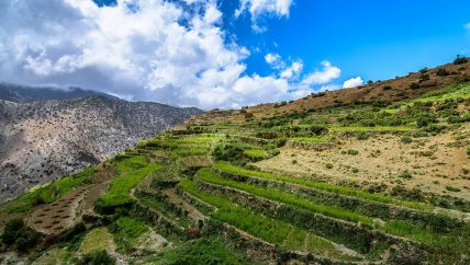 Active Treks Morocco - Berber Villages of Ouirgane group trek