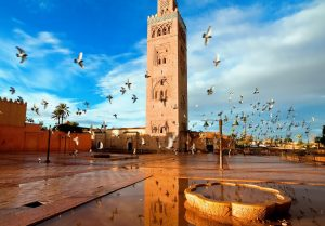 Marrakech And High Atlas